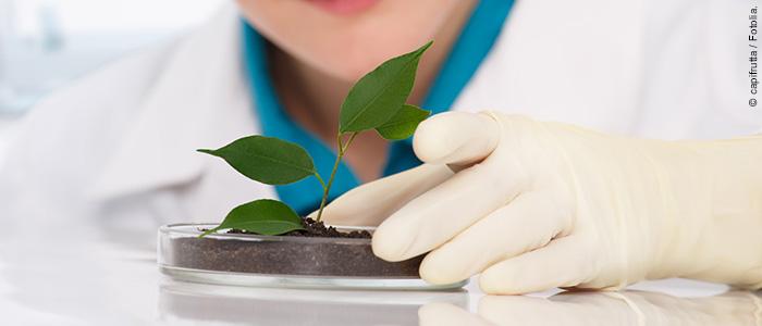 2016-11_Pflanzen-DNA als Faelschungsschutz