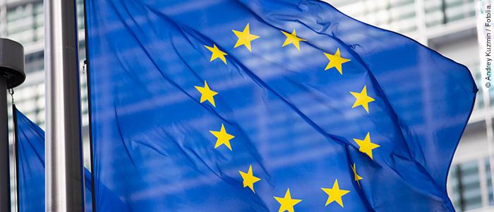 Neuer Bericht zum Kampf gegen illegalen Handel mahnt zu Reformen in der EU-Gesetzgebung