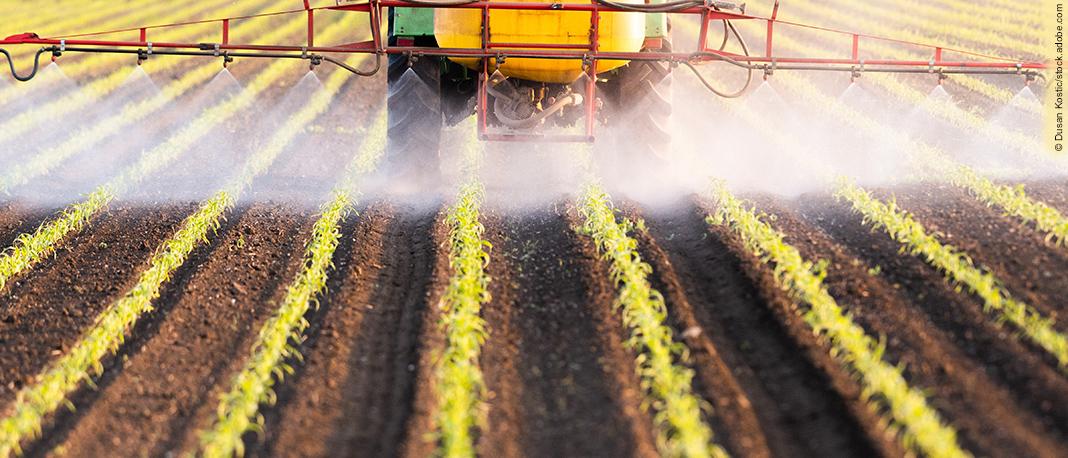 Pestizide, Parfüms, Mode, Konsumgüter – Aktionen gegen Plagiate
