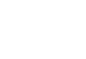 Icon Auto Weiß